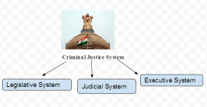 Branches of Criminal Justice System